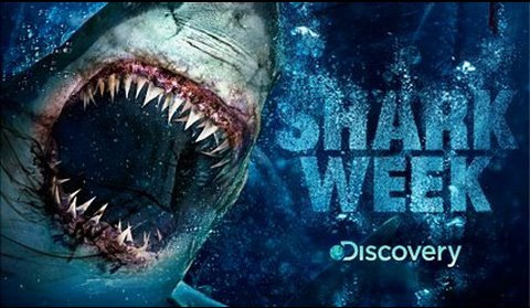 shark-week-discovery-channel.jpg